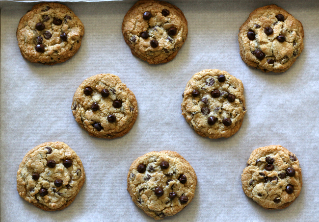 Just-out-of-the-oven-gluten-free-chocolate-chip-cookies.jpg